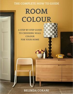 room colour book